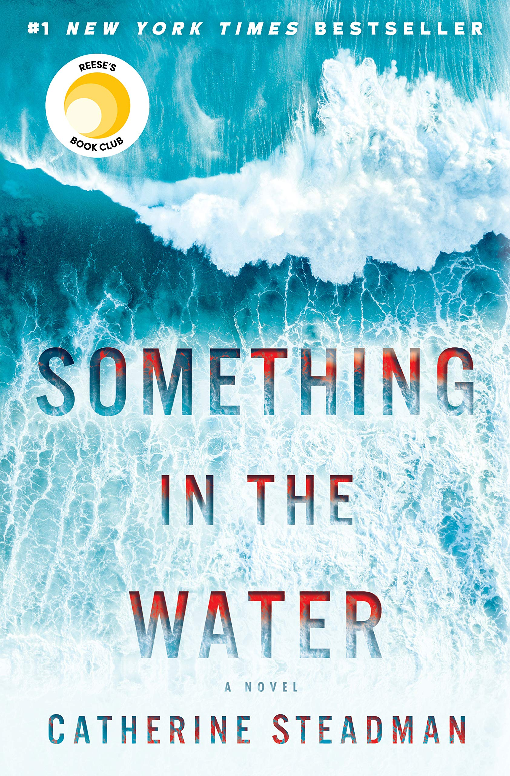 Book cover that is an aerial shot of a blue wave with text Something in the Water