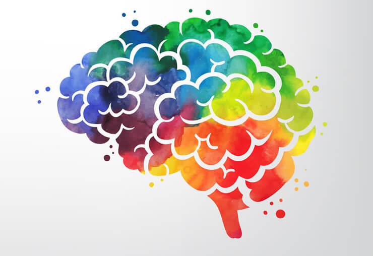 A rainbow colored brain